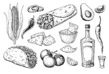 Cocina mexicana dibujo. Ilustración de vector de comida y bebida tradicional. Taco grabado, burrito, nachos y botella de tequila, tiro. Conjunto dibujado a mano. Boceto para el menú del restaurante, etiqueta, pancarta