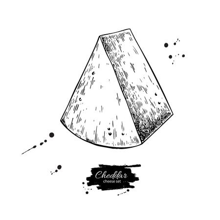 Cheddar cheese drawing. Vector hand drawn food sketch. Engraved triangle Slice cut. Farm market product for label, poster, icon, packaging