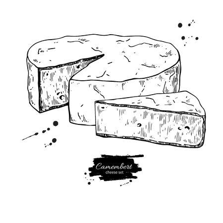 Camembert cheese block and triangle drawing. Vector hand drawn food sketch. Фото со стока - 94176461