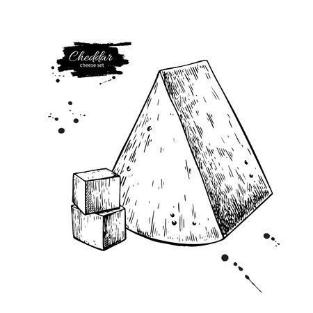 Cheddar cheese drawing. Vector hand drawn food sketch. Engraved triangle Slice 向量圖像