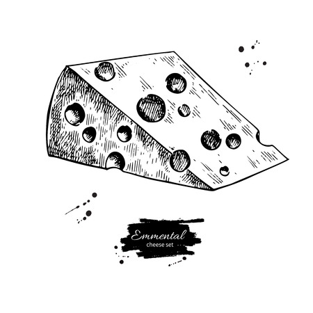 Emmental cheese drawing. Vector hand drawn food sketch. Engraved triangle slice cut. Illustration