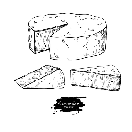 Camembert cheese block and triangle drawing vector hand drawn food sketch. Ilustração