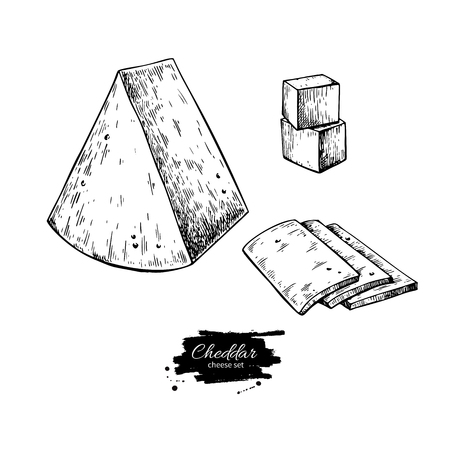 Cheddar cheese drawing vector hand drawn food sketch engraved triangle. Standard-Bild - 94276826