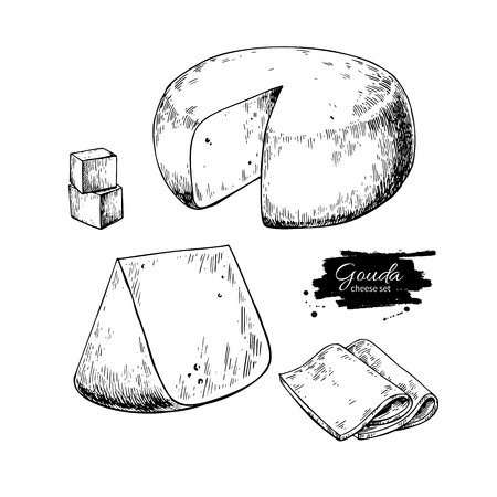 Gouda cheese block drawing vector hand drawn food sketch engraved slice cut. Illusztráció