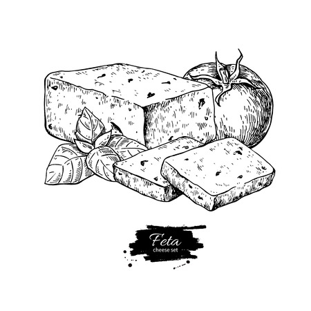 그리스 죽은 태아의 치즈 블록 드로잉 벡터 손으로 그린 된 음식 스케치입니다.