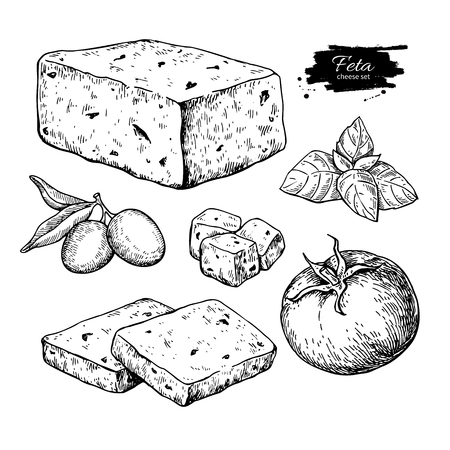 Greek feta cheese block, slice drawing. Vector hand drawn food sketch with olive, basil, tomato. Иллюстрация