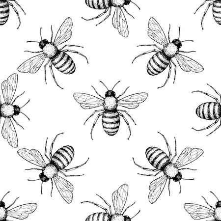 Bee vector seamless pattern. Hand drawn insect background. 向量圖像