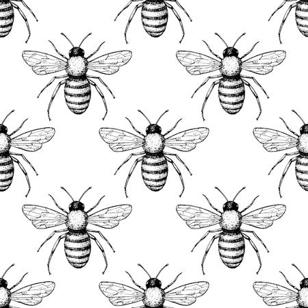 Bee vector seamless pattern. Hand drawn insect background. 일러스트