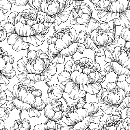 Peony flower seamless pattern drawing.