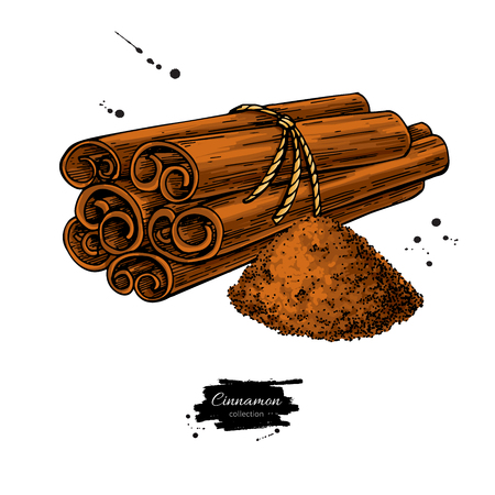 Cinnamon stick tied bunch and powder. Vector drawing. Hand drawn sketch. Seasonal food illustration isolated on white. Standard-Bild - 97901250