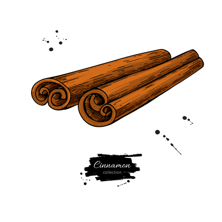 Cinnamon stick vector drawing. Hand drawn sketch. Seasonal food illustration isolated on white. Spice and flavor object. Cooking and aromaterapy ingredient. Standard-Bild - 97900754
