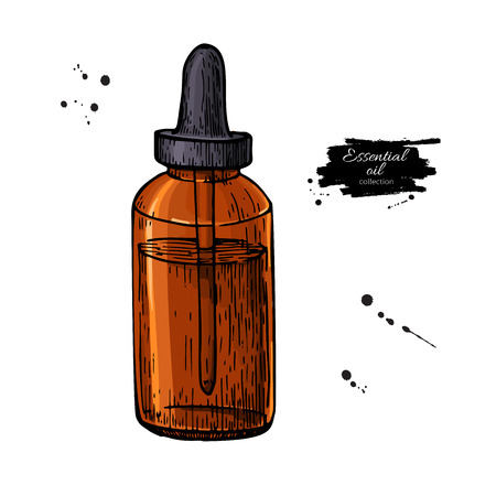 Essential oil glass bottle hand drawn vector illustration. Isola