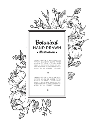 Flower vintage border with peony and roses botanical drawing. Vettoriali