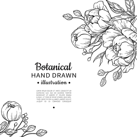 Vintage flower vector frame drawing in black and white Illustration.