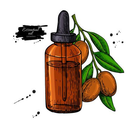 Argan essential oil bottle hand drawn vector illustration. Isola Illusztráció