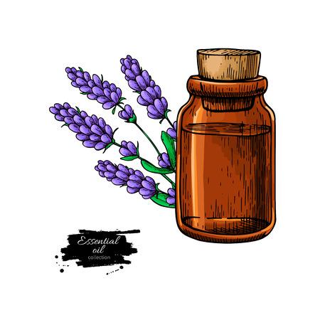 Lavander etherische olie fles en bos bloemen hand getekende ve Vector Illustratie