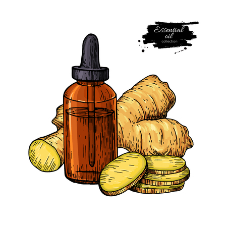 Ginger essential oil bottle and ginger root hand drawn vector illustration. Isolated drawing for Aromatherapy treatment, alternative medicine, beauty and spa, cosmetic ingredient. Great for label, packaging design. Stock Illustratie
