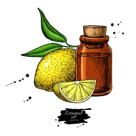 Lemon essential oil bottle and lemon fruit hand drawn vector ill