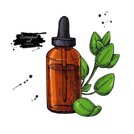 Oregano essential oil bottle and oregano leaves hand drawn vecto