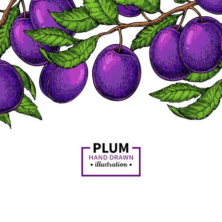 Plum branch border design  イラスト・ベクター素材
