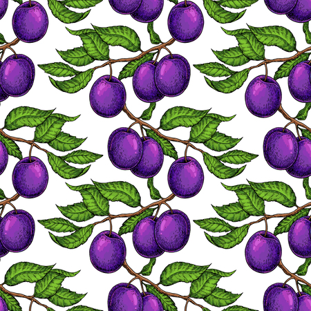 Plum branch seamless pattern. Vector drawing. Hand drawn isolate