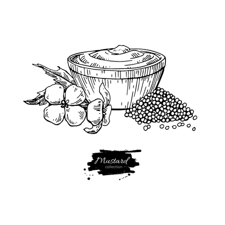 Mustardi sauce in bowl vector drawing. Hand drawn food ingridient.