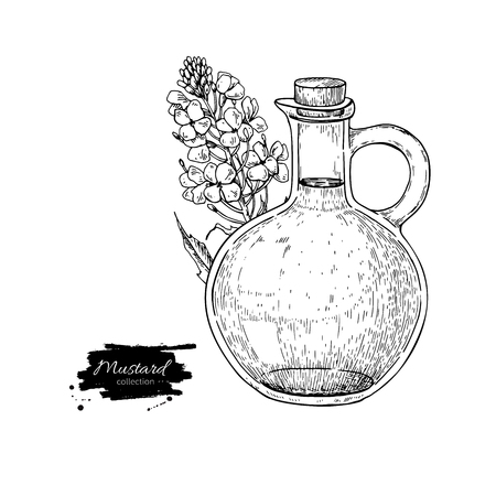 Bottle of mustard oil with plant. Vector Hand drawn illustration.