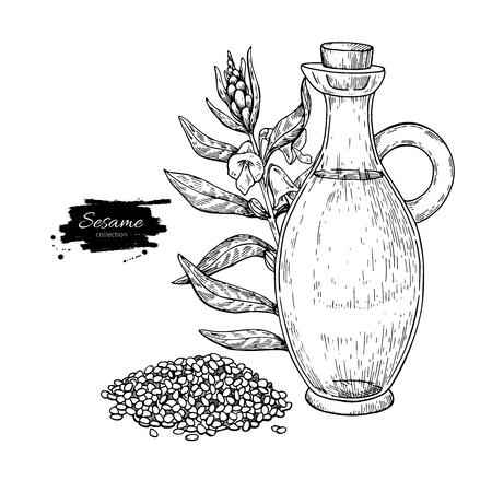 Bottle of sesame oil with plant. Vector Hand drawn illustration. Vectores