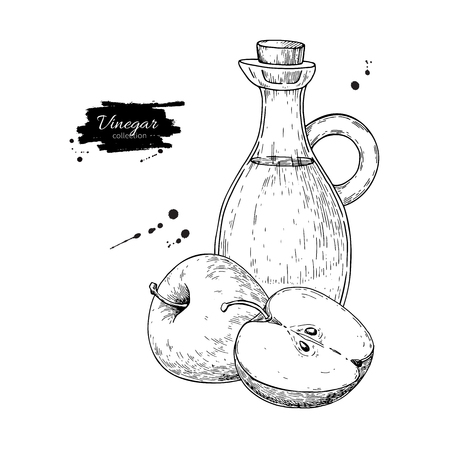 Apple vinegar vector drawing.  Hand drawn illustration. Glass bo Foto de archivo - 100641329