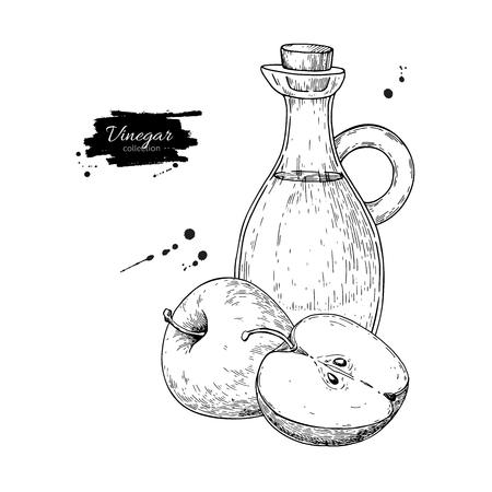 Dibujo vectorial de vinagre de manzana. Ilustración dibujada a mano. Vidrio bo