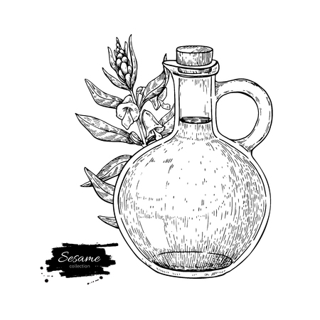 Bottle of sesame oil with plant. Vector Hand drawn illustration. Иллюстрация