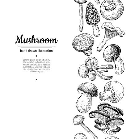 Mushroom drawing vector seamlees border. Isolated   food frame s