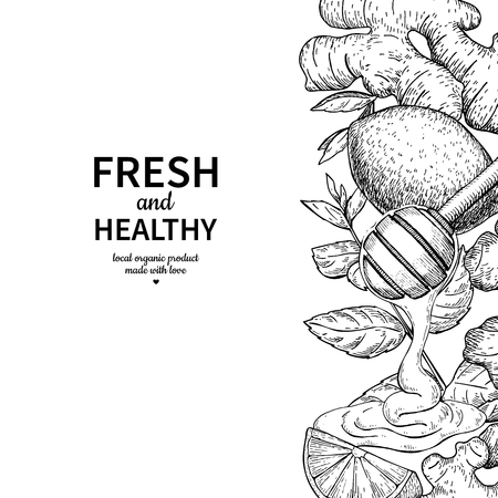 Honey, ginger, lemon and mint vector border drawing. Wooden spoon, honey drop, herb and fruit sketch. Template for tea or cosmetic, alternative medicine, flu treatment. Labe, packaging design concept