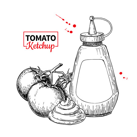Ketchup sauce bottle with tomatoes. Vector drawing. Food flavor