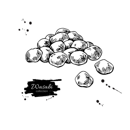 Wasabi peas vector drawing. Hand drawn japanese appetizer. Dry Spice food. Illusztráció