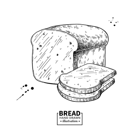 Bread vector drawing. Bakery product sketch. Vintage food illustration for shop, bread house label, menu or packaging design. Illusztráció
