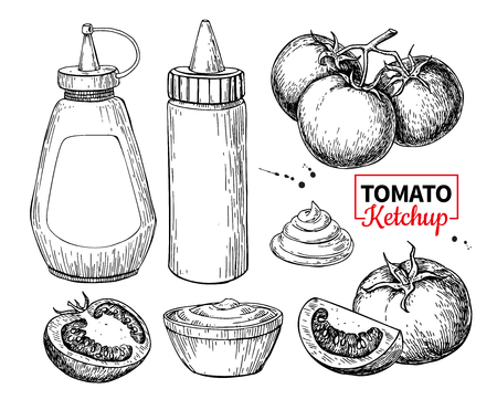 Ketchup sauce bottle with tomatoes. Vector drawing. Food flavor Standard-Bild - 101583479