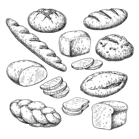 Bread vector drawing. Bakery product sketch. Vintage food  イラスト・ベクター素材