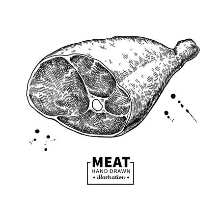 Parma ham vector drawing. Hand drawn hamon meat illustration. Italian prosciutto