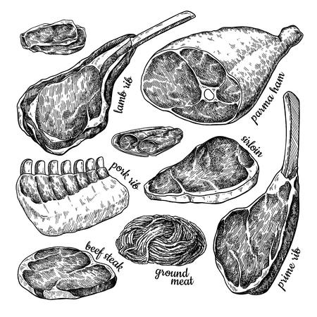 Set di carne cruda disegno vettoriale. Bistecca di manzo disegnata a mano, prosciutto di maiale, costolette di agnello, carne di pollo tritata. Vettoriali