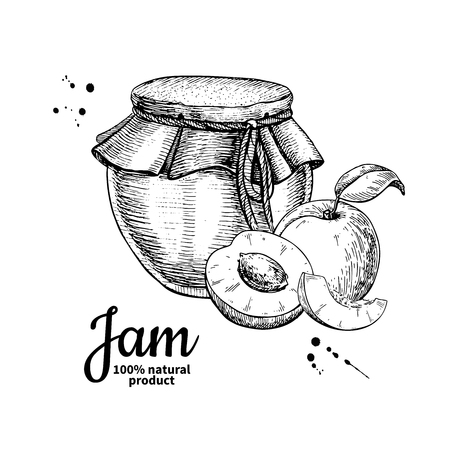 Apricot jam glass jar vector drawing.  Fruit Jelly and marmalade Çizim