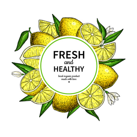 Lemon frame vector drawing. Citrus fruit circle label template.
