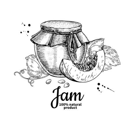 Pumpkin jam glass jar vector drawing. Jelly and marmalade.  Hand