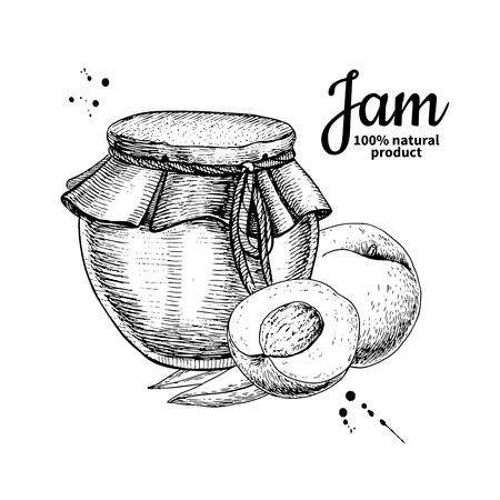 Peach jam glass jar vector drawing.  Fruit Jelly and marmalade.
