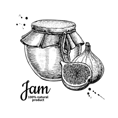 Fig jam glass jar vector drawing.  Fruit Jelly and marmalade.  H