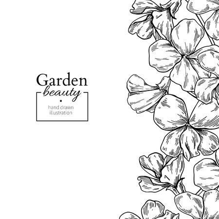 Violet flower drawing. Vector hand drawn engraved floral set. Vi