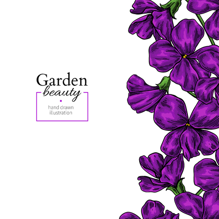 Violet flower drawing. Vector hand drawn floral frame. Viola border sketch. Stock Illustratie