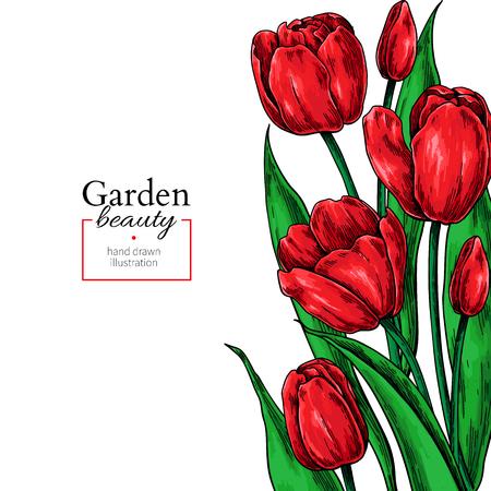 Flor de tulipán y hojas de borde de dibujo. Vector marco floral dibujado a mano. Boceto botánico. Ideal para tatuajes, invitaciones de boda, tarjetas de felicitación, decoración.