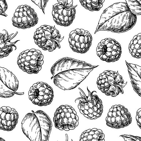Raspberry naadloze patroon. Vector tekening. Geïsoleerde bes schets op witte achtergrond. Vector Illustratie