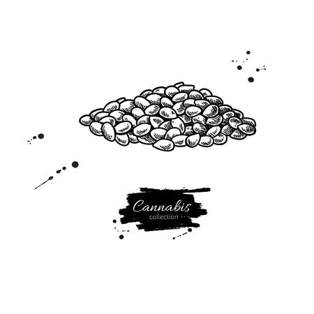 Montón de semillas de cáñamo. Dibujo vectorial. Dibujado a mano ilustración grabada. Bosquejo de alimentos orgánicos. Ingrediente de aceite natural. Ideal para etiquetas, iconos, letreros, diseño de envases